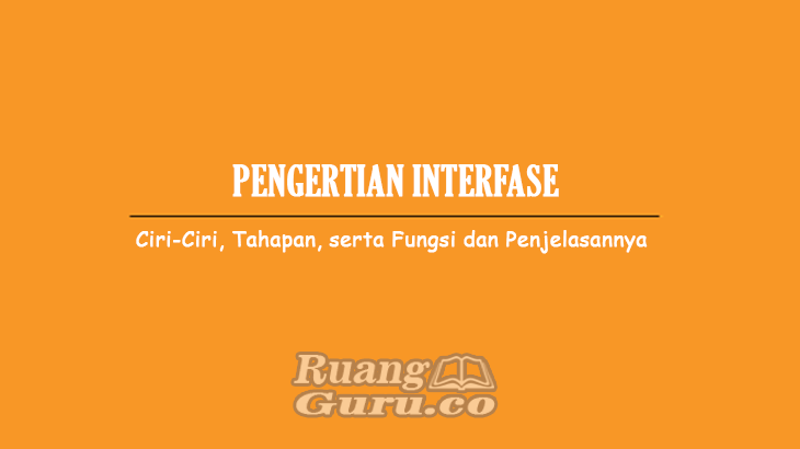 Pengertian-Interfase